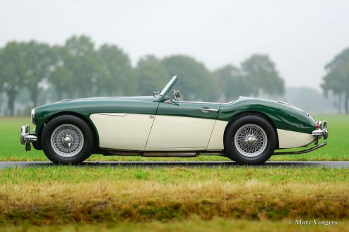 Austin Healey 100/6 'two-seater', 1957